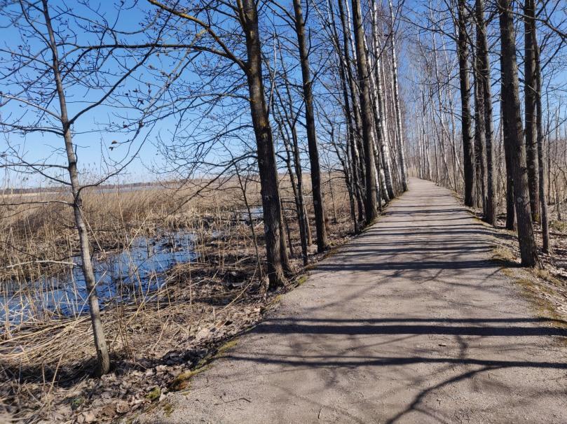 Seaside path in Otaniemi (Espoo, Finland)